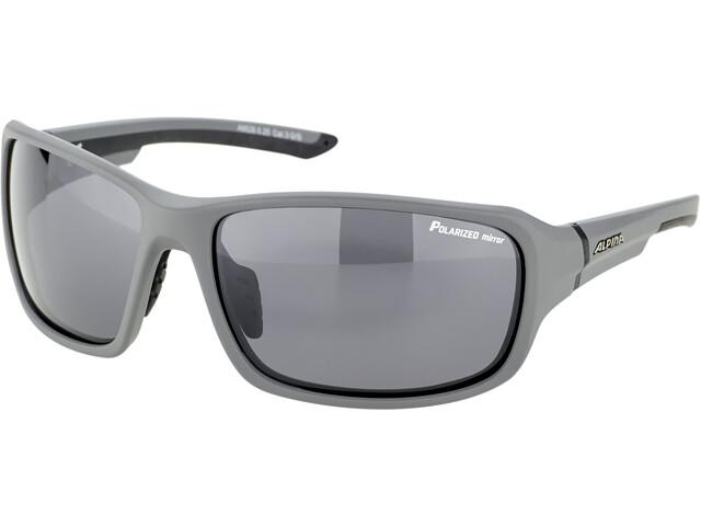 Alpina Lyron P Okulary, grey matt-black/black mirror